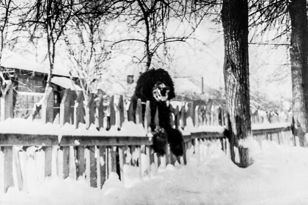 Советская улица, февраль 1975 года
